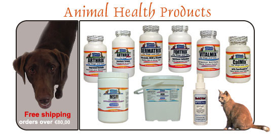 arthritis in dogs, skin problems,antioxidant,supplements for dogs, supplements for horses